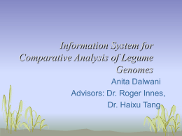 Information System for Comparative Analysis of Legume