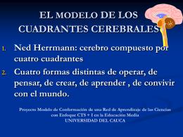 EL MODELO DE LOS CUADRANTES CEREBRALES