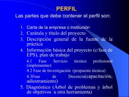 PERFIL - Ejercicio Profesional Supervisado