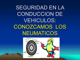SEGURIDAD EN LA CONDUCCION DE VEHICULOS: …