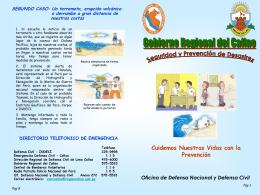 Diapositiva 1 - **Sistema de Seguridad y Defensa**