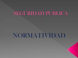 SEGURIDAD PUBLICA