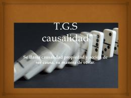 T.G.S causalidad - Ingenieriadesistemasp