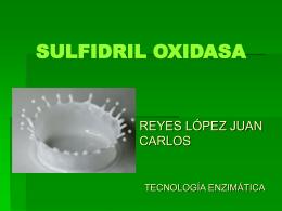 SULFIDRIL OXIDASA