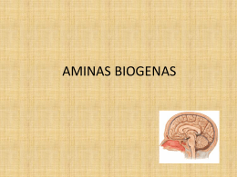 AMINAS BIOGENAS - Seccionseis's Weblog