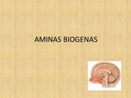 AMINAS BIOGENAS - Seccionseis's Weblog