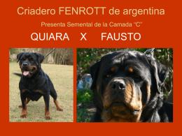 "Criadero FENROTT Presenta su Camada ""A"""