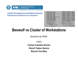 Beowulf vs Cluster of Workstations