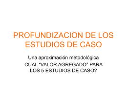 PROFUNDIZACION DE LOS ESTUDIOS DE CASO