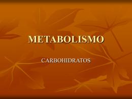 METABOLISMO - alumnosmedicinaunahvs