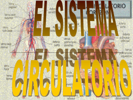 SISTEMA CIRCULATORIO - Multiblog — Blogs en el PNTE
