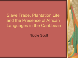 Slave Trade, Plantation Life and the Presence of African