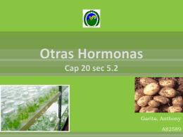 Otras Hormonas