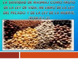 LA SANTIDAD DE MASHIAJ COMO FRUTO DE LA LEY DE …