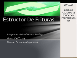 ESTRUCTOR DE FRITURAS