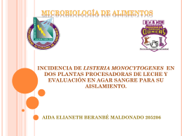 INCIDENCIA DE LISTERIA MONOCYTOGENES EN DOS …