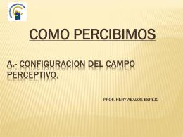 A.- CONFIGURACION DEL CAMPO PERCEPTIVO.
