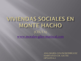 VIVIENDAS SOCIALES EN MONTE HACHO