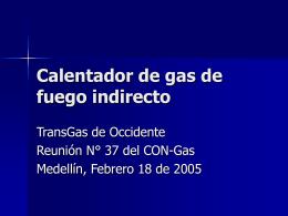 Calentador de gas de fuego indirecto - CNO-Gas