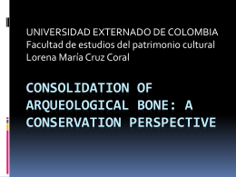 CONSOLIDATION OF ARQUEOLOGICAL BONE: A …