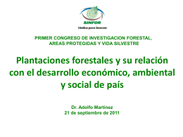 Plantaciones forestales y su impacto en el desarrollo