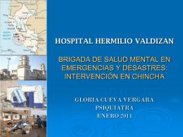 HOSPITAL HERMILIO VALDIZAN BRIGADA DE SALUD …