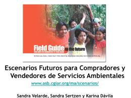 Escenarios Futuros para Compradores y Vendedores de