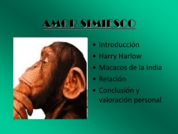 AMOR SIMIESCO - INTEF