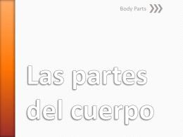 Las partes del cuerpo