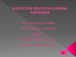 INSTITUCION EDUCATIVA GENERAL SANTANDER