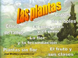 Diapositiva 1 - LaprofeCharo