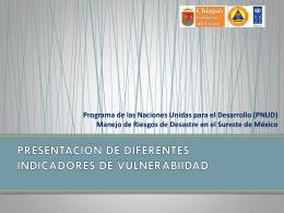 www.ceieg.chiapas.gob.mx