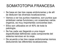 SOMATOTOPIA FRANCESA