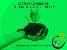 MICROORGANISMOS EN EL SUELO