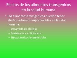Efectos de los alimentos transgenicos en la salud humana