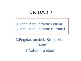 UNIDAD 2 - Pixelnet e