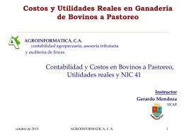 LAS NORMAS INTERNACIONALES DE CONTABILIDAD
