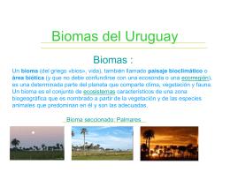 Biomas del Uruguay - Liceoweblog's Weblog