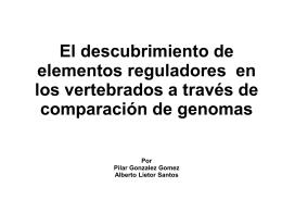 El descubrimiento de elementos reguladores en los
