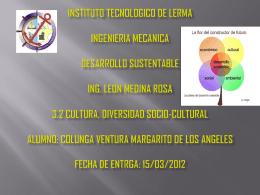 INSTITUTO TECNOLOGICO DE LERMA INGENIERIA …