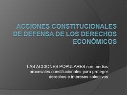 Acciones constitucionales de defensa de los derechos