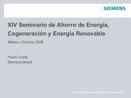XIV Seminario de Ahorro de Energia, Cogeneration y …