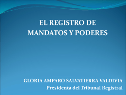 NATURALEZA DEL PROCEDIMIENTO REGISTRAL
