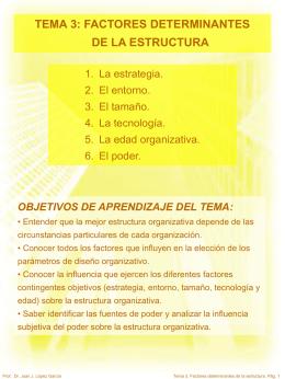 TEMA 3 FACTORES DETERMINANTES DE LA ESTRUCTURA  …