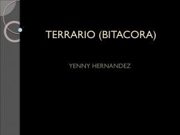 TERRARIO (BITACORA)
