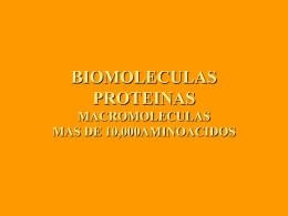 BIOMOLECULAS PROTEINAS
