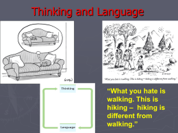 Thinking and Language - Santa Ana Unified School …