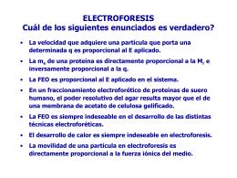 ELECTROFORESIS EN GEL DE POLIACRILAMIDA