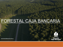 Proyecto offsets FORESTAL CAJA BANCARIA