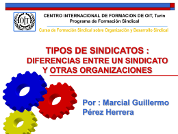 Tipos de Sindicatos - Training.itcilo.it